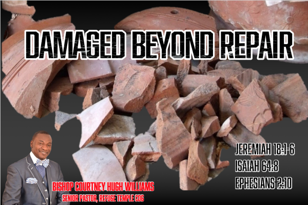 Series: Damaged Beyond Repair